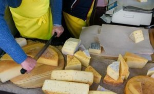 "Tour operators following ban on parmesan imports: ""Might they eat their low-quality products themselves"""