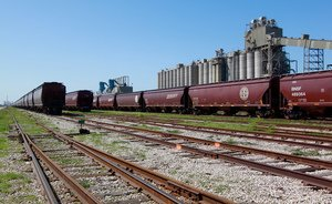 Russia to impose no limits on grain export